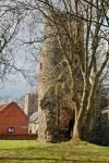 Kirby Bedon St Mary