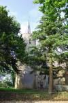 Stockton St Michael